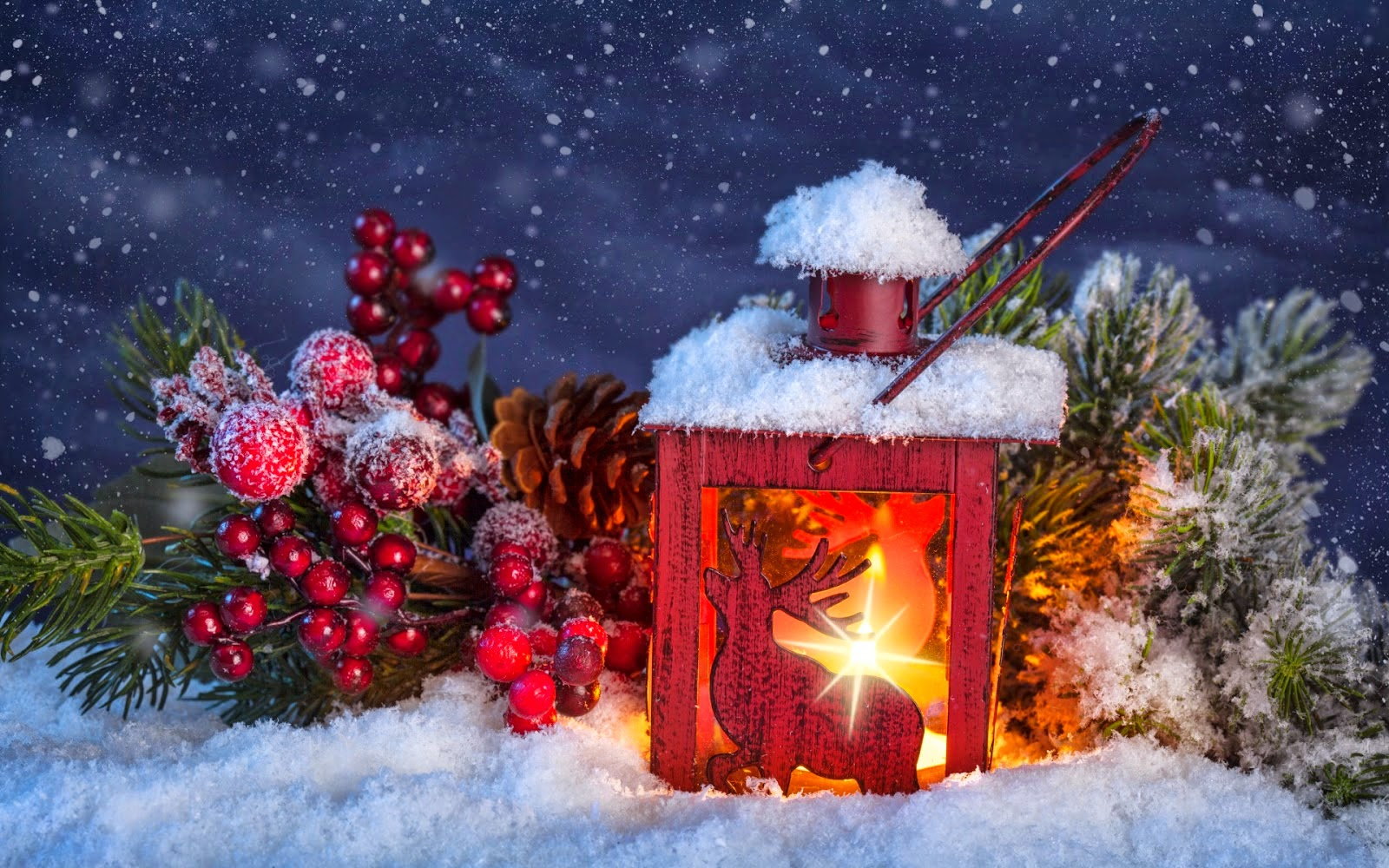 Oferta de Crăciun 2017