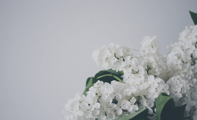 veri-ivanova-17534